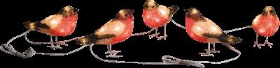 Konstsmide LED Rotkehlchen